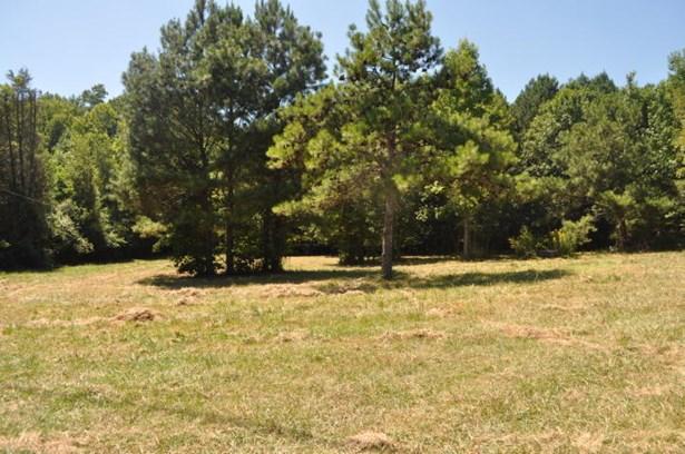 Lots and Land - LaFayette, GA (photo 2)