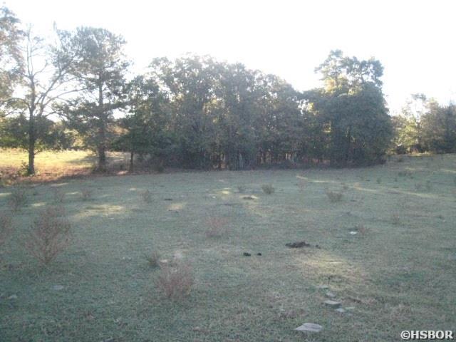 Lots and Land - Royal, AR (photo 4)