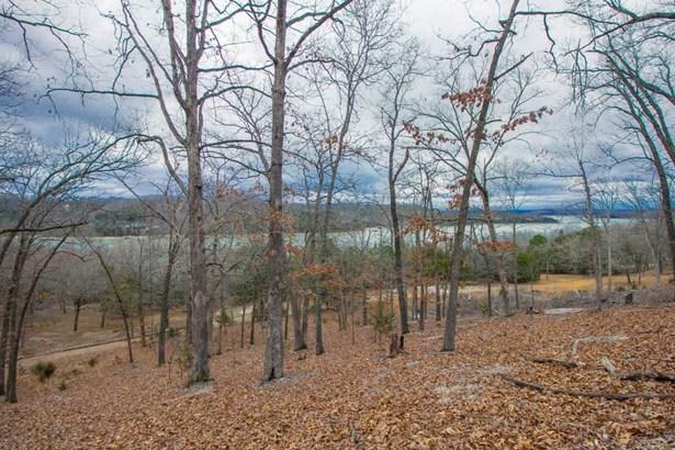 Lots and Land - Garfield, AR (photo 3)