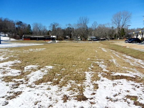Lots and Land - Oneida, TN (photo 2)