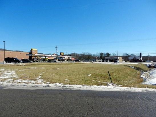 Lots and Land - Oneida, TN (photo 4)