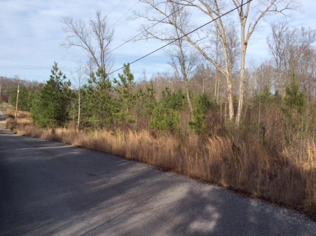 Lots and Land - Bon Aqua, TN (photo 1)