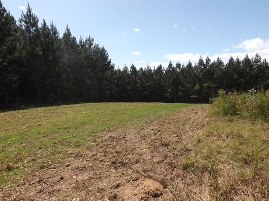 Lots and Land - Lawrenceburg, TN (photo 1)