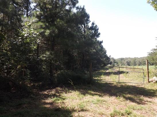 Lots and Land - Lawrenceburg, TN (photo 2)