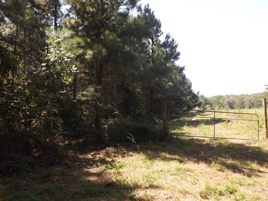 Lots and Land - Lawrenceburg, TN (photo 3)