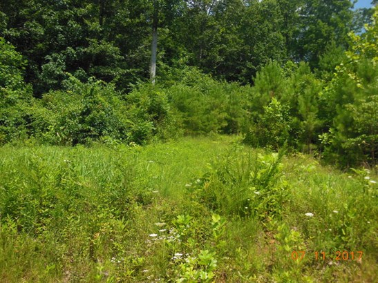 Lots and Land - Riceville, TN (photo 2)