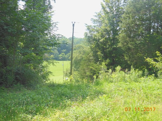 Lots and Land - Riceville, TN (photo 3)