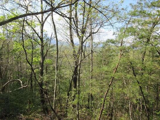Lots and Land - Gatlinburg, TN (photo 2)