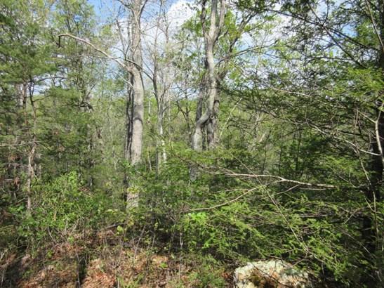 Lots and Land - Gatlinburg, TN (photo 5)