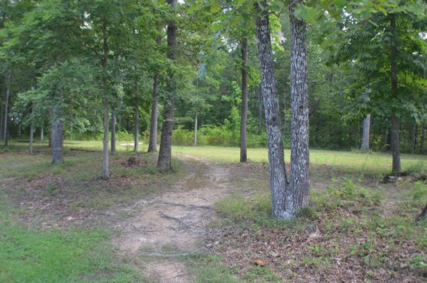 Lots and Land - Crossville, TN (photo 3)