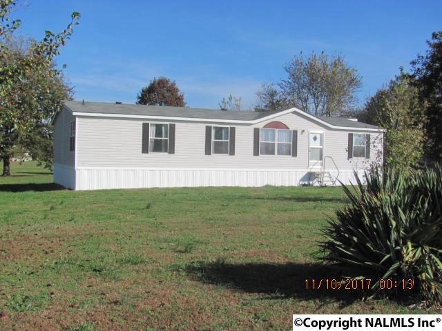 Residential/Single Family - HAZEL GREEN, AL (photo 1)