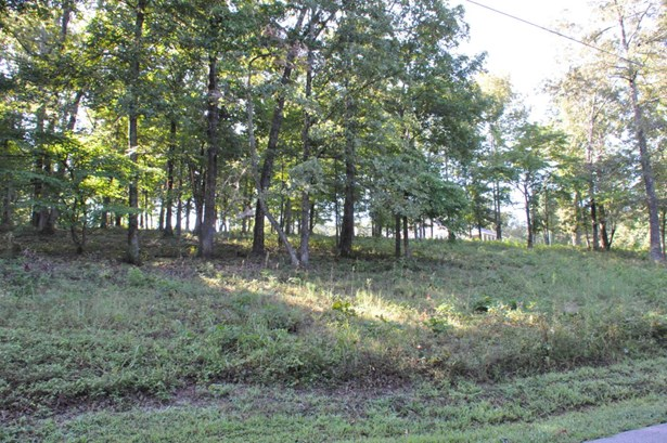 Lots and Land - Whitwell, TN (photo 2)