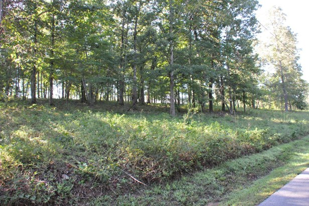 Lots and Land - Whitwell, TN (photo 4)
