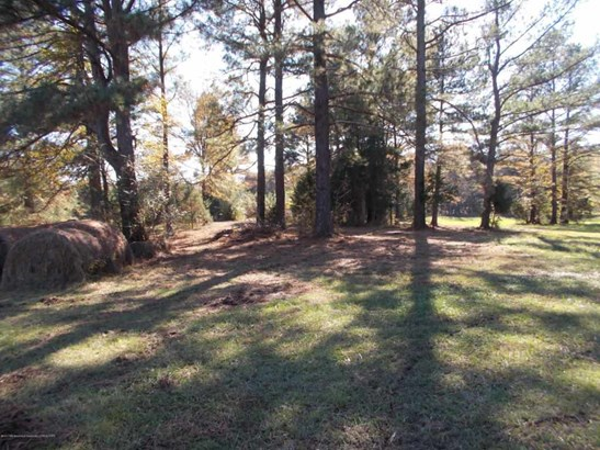 Lots and Land - Holly Springs, MS (photo 4)