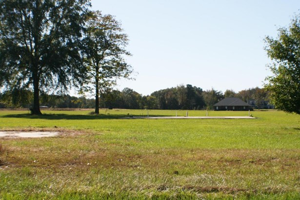 Lots and Land - Fulton, MS (photo 3)