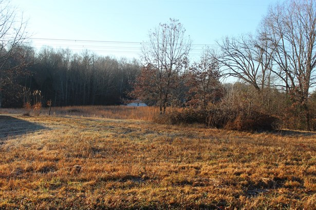 Lots and Land - Burns, TN (photo 1)