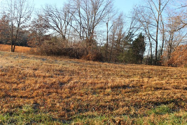 Lots and Land - Burns, TN (photo 2)