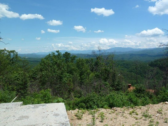 Lots and Land - Sevierville, TN (photo 4)