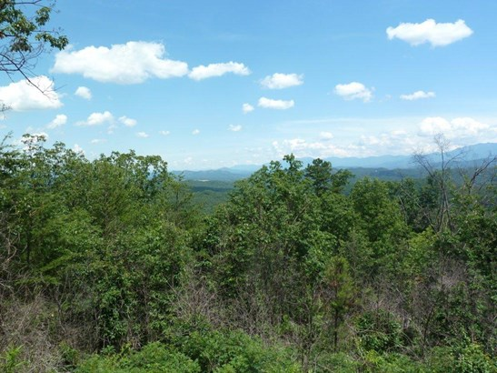 Lots and Land - Sevierville, TN (photo 5)