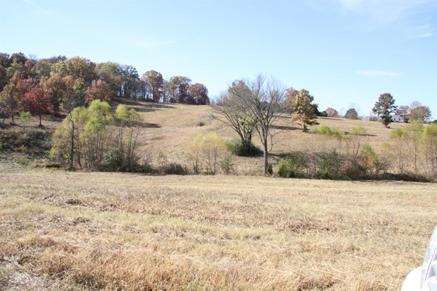 Lots and Land - Columbia, TN (photo 3)