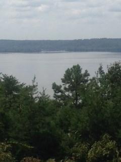 Lots and Land - Cherokee, AL (photo 1)