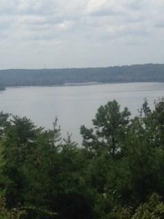 Lots and Land - Cherokee, AL (photo 2)