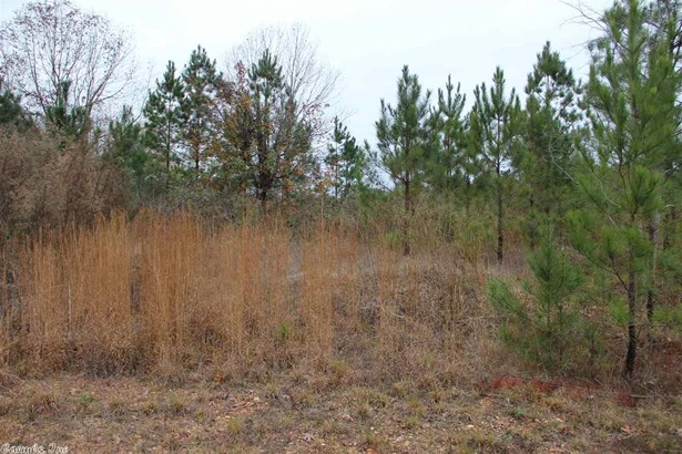 Lots and Land - Alexander, AR (photo 1)