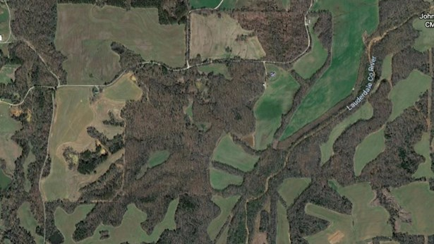 Lots and Land - Whiteville, TN (photo 3)