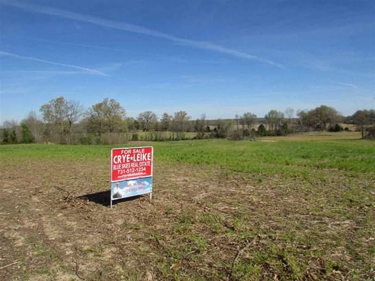 Lots and Land - Trenton, TN (photo 3)