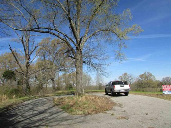 Lots and Land - Trenton, TN (photo 4)