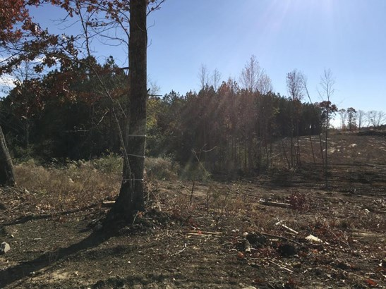Lots and Land - Dunlap, TN (photo 4)