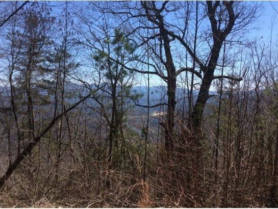 Lots and Land - Del Rio, TN (photo 4)