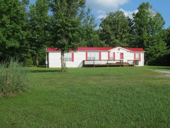 Residential/Single Family - Ten Mile, TN (photo 5)