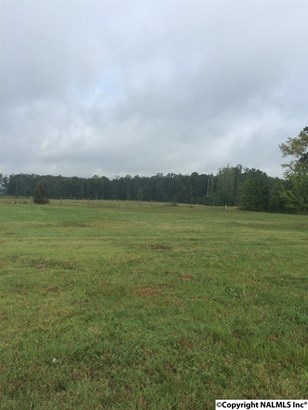 Lots and Land - NEW MARKET, AL (photo 1)