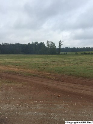 Lots and Land - NEW MARKET, AL (photo 2)