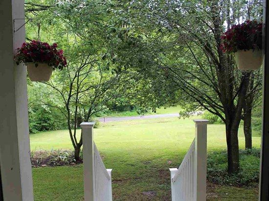 Residential/Single Family - Tellico Plains, TN (photo 4)