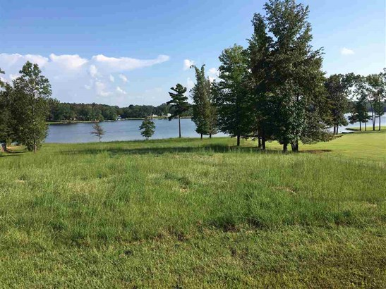 Lots and Land - Lexington, TN (photo 4)