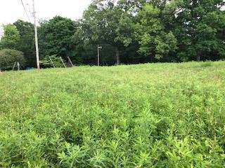 Lots and Land - Fairview, TN (photo 3)