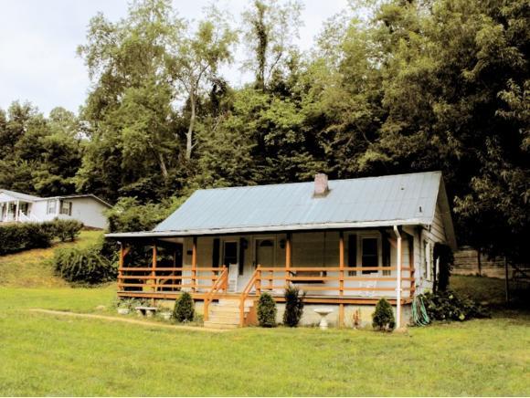 Residential/Single Family - Unicoi, TN (photo 2)