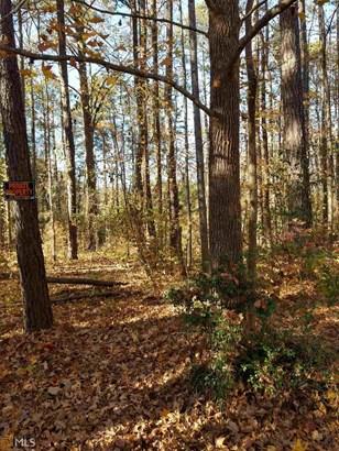 Lots and Land - Jonesboro, GA (photo 5)