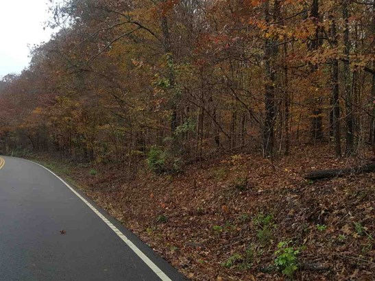 Lots and Land - Linden, TN (photo 2)