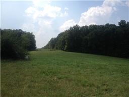 Lots and Land - Burns, TN (photo 1)