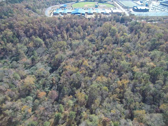 Lots and Land - Hot Springs, AR (photo 2)