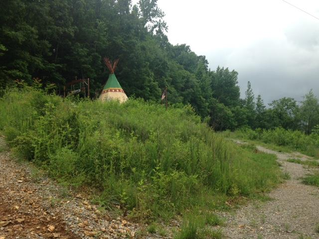 Lots and Land - Dellrose, TN (photo 1)