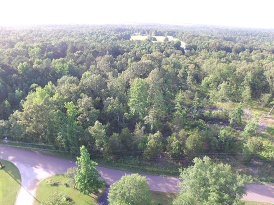 Lots and Land - Henderson, TN (photo 1)