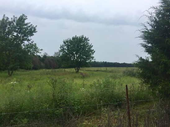 Lots and Land - Lascassas, TN (photo 3)
