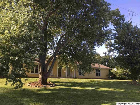 Residential/Single Family - MERIDIANVILLE, AL (photo 1)