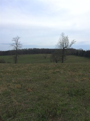 Lots and Land - Sweetwater, TN (photo 5)