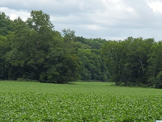 Lots and Land - Elkmont, AL