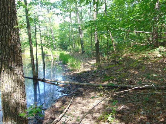 Lots and Land - Tumbling Shoals, AR (photo 3)
